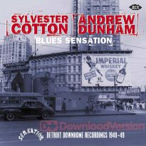 Blues Sensation: Detroit Down Home Recordings 1948-49 (MP3)