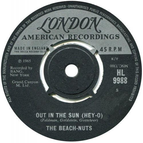 The Beach Nuts 'Out in the Sun (Hey-O)'