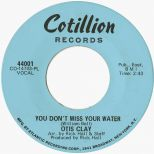 Otis Taylor 'You Don't Miss Your Water'