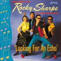 Looking For An Echo (MP3)