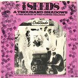 The Seeds 'A Thousand Shadows'