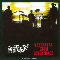 Teenagers From Outer Space (MP3)