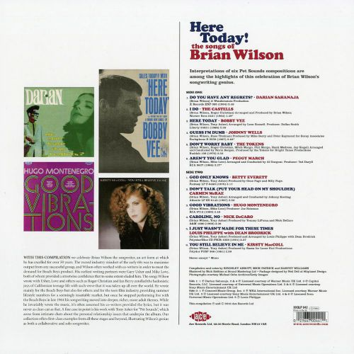 Here Today! The Songs Of Brian Wilson LP back cover