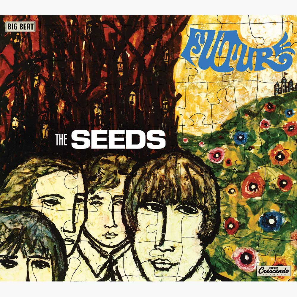 Seed The Future Future The Seeds