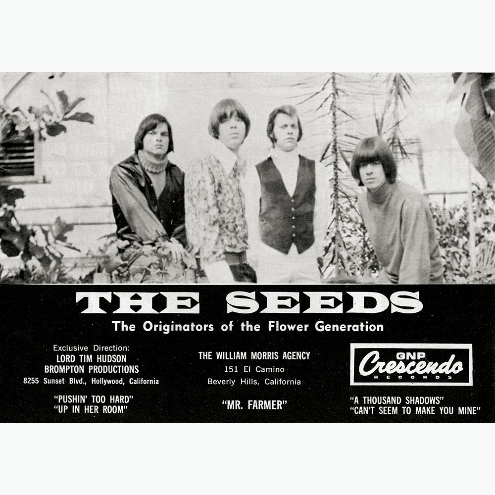 Seed The Future The Seeds Future Availablity